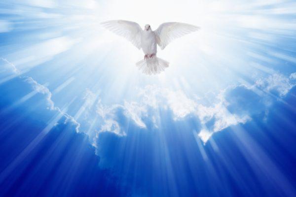 Ce trebuie să facem pentru a dobândi duhul sfânt? – ORA DE RELIGIE